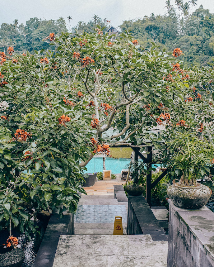 Mandapa-Bali-Hotel-area
