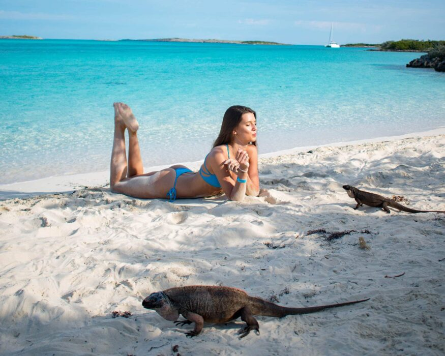 iguana beach exuma cays