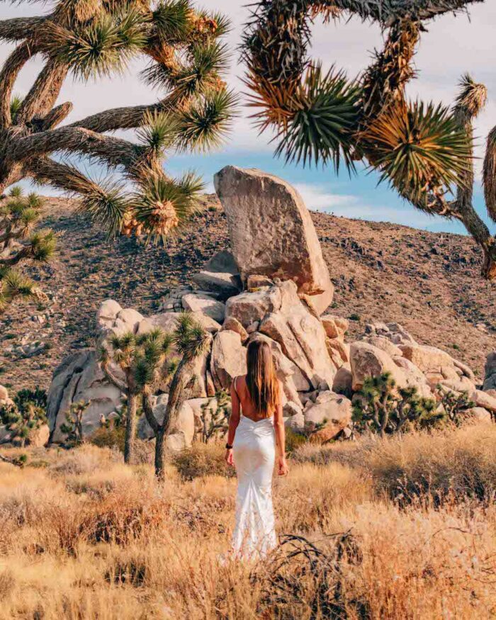 joshua tree national park girl in white dress