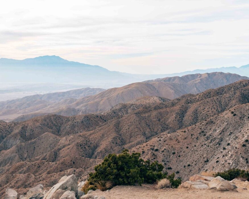 joshua tree keys view