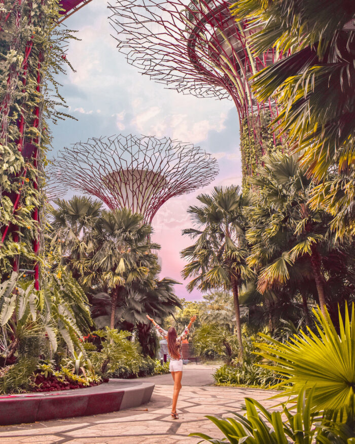 singapore-gardens-by-the-bay-super-trees