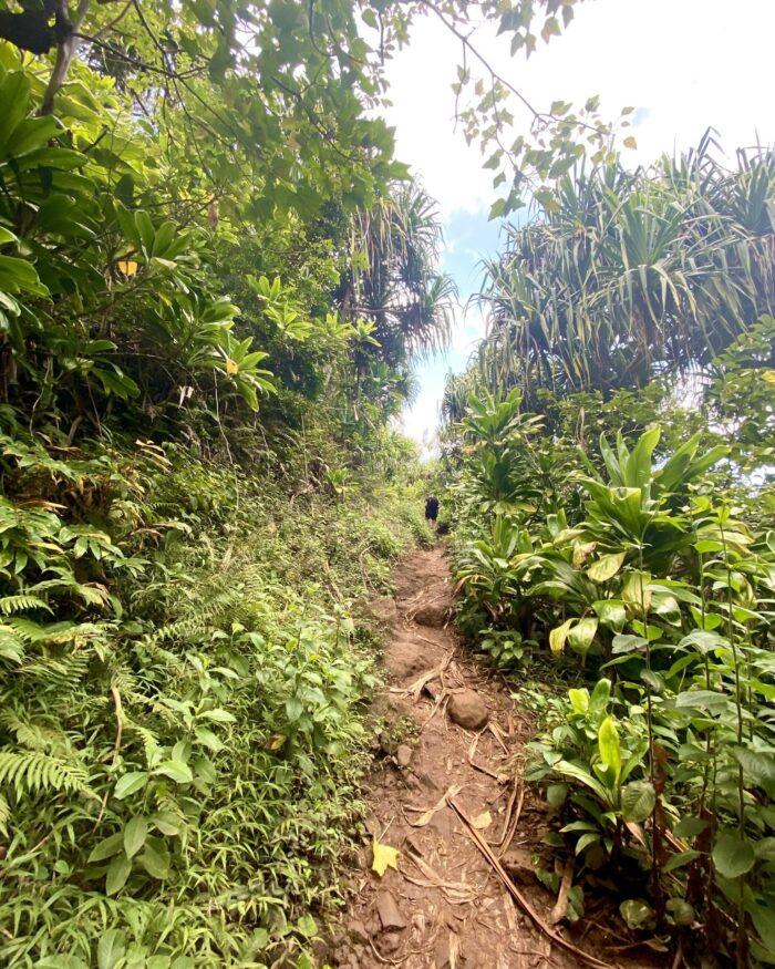 kauai kalalau trail
