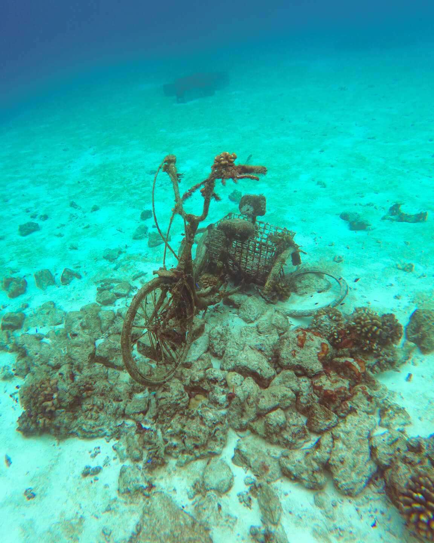 underwater bicycle corals Maldives
