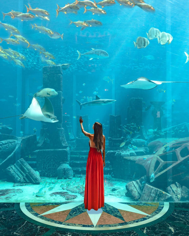 Atlantis-dubai-ambassador-lagoon
