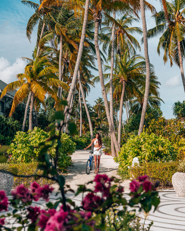 bicycle-plam-trees-saii-lagoon-maldives